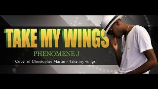 Phenomene J - Take My Wings (Christopher Martin COVER) (2015) - 230NouKiltir