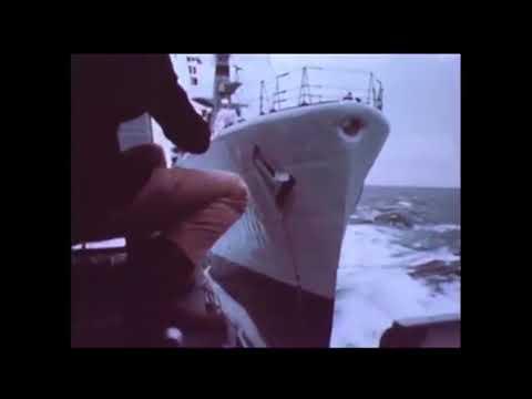 Forget Road Rage -  Look at sea rage. HMS Andromeda
