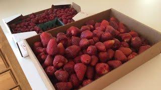 Клубника / Виктория / Малина с сахаром / Вкуснее чем варенье / Идеи заготовки ягоды на зиму