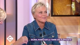 Muriel Robin sur la terre des éléphants - C à Vous - 26/10/2017