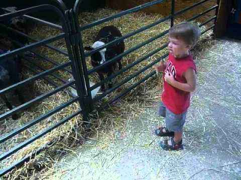 Valleyview Little Animal Farm Petting Zoo Ottawa