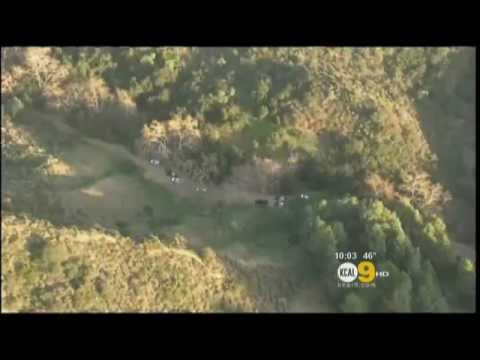 Dog Walkers Stumble Upon Human Head In Hollywood Hills