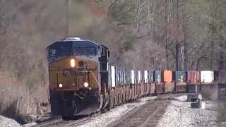CSX Intermodal / Tropicana Train Thru Thomas & Dorsey