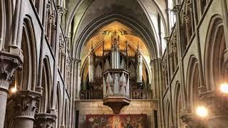 Orgue Plasmique (Composition Orgues-Piano)