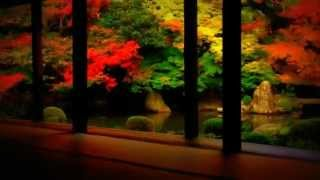 vuclip Japan - true beauty - XJapan