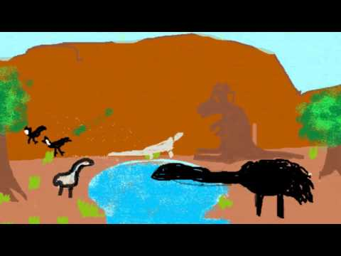 Why the Black Cockatoo and Emu Held a Community Celebration - Eastern Arrernte - ACBS