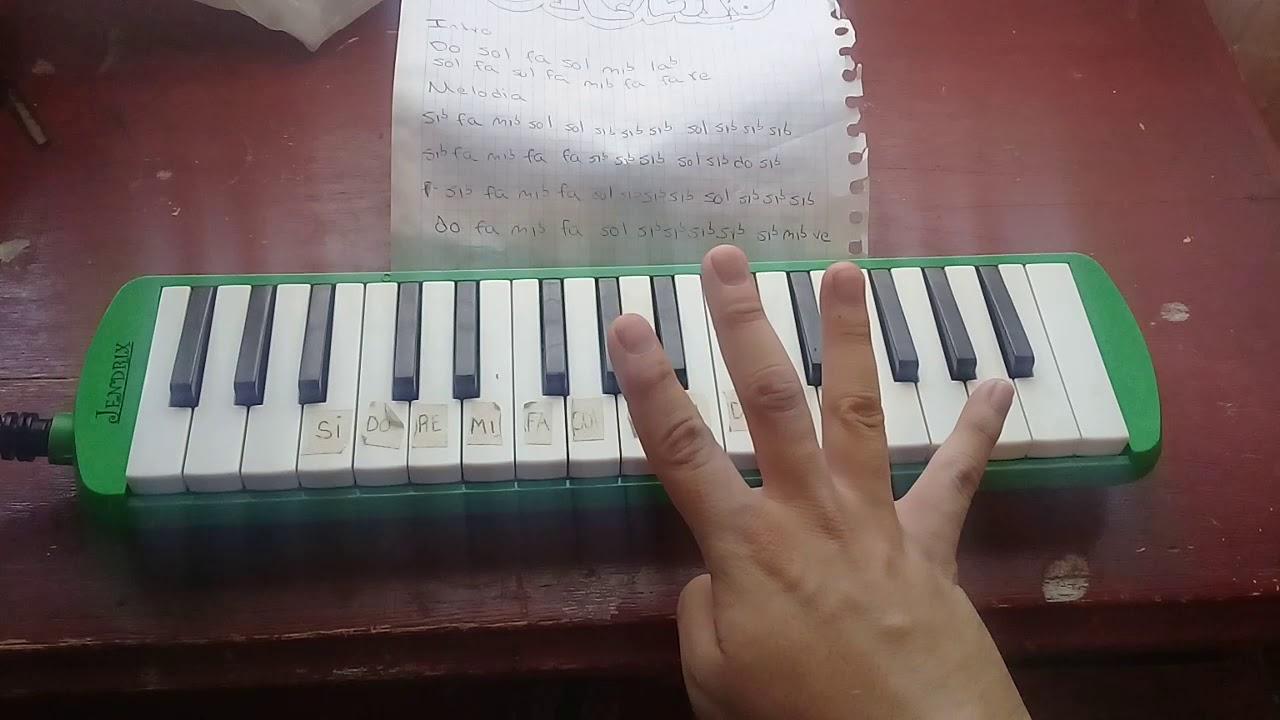 Laxed tik tok tutorial en melodica