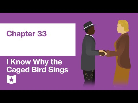 i-know-why-the-caged-bird-sings-by-maya-angelou-|-chapter-33