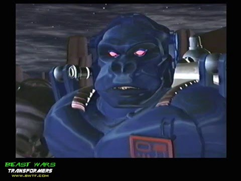 The Cast of Beast Wars and Beast Machine Tranformers