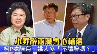 小野辭兩職專心輔選 柯P嗆陳菊、姚人多「不請辭嗎?」 | 台灣蘋果日報