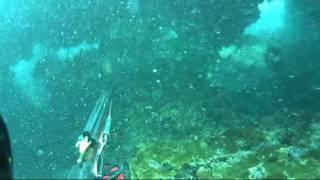 hkd 8 smoke screen spearfishing hawaii