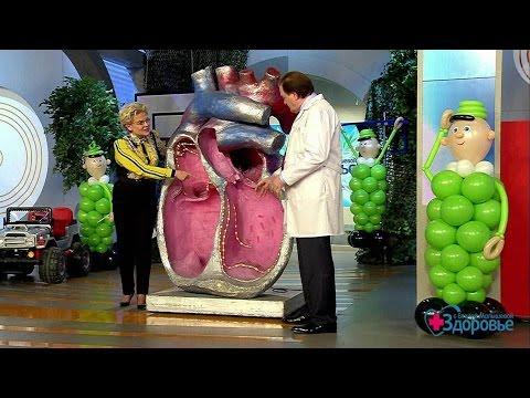 Последствия варикоцеле - Симптомы варикоцеле
