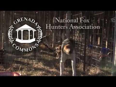 National Fox Hunters Association - Grenada, Mississippi