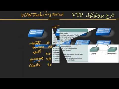 شرح بروتوكول الـ VTP