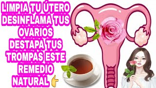 Limpia Y Tu útero Desinflama Ovarios Y Destapa Tus Trompas Youtube