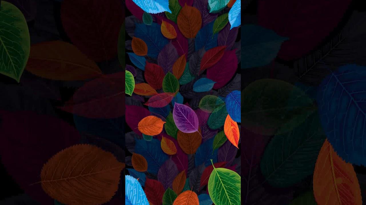 Samsung Theme Live WallpaperColorful Leaf