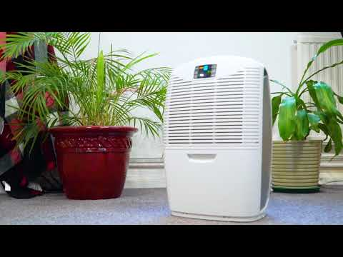 The Smart Way To Get Rid Of Condensation | Ebac Dehumidifiers