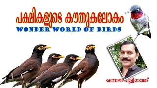 Wonder world of birds/പക്ഷികളുടെ കൗതുകലോകം/Pakshikalude kouthukalokam/class 4 EVS