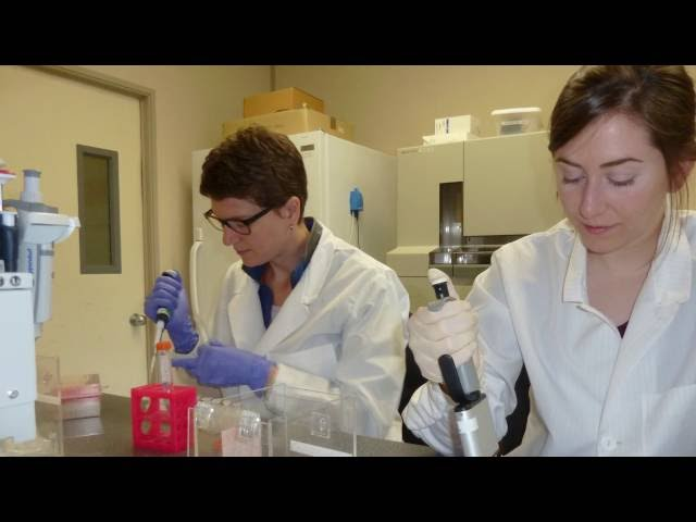 Our Scientists – From Coast to Coast to Coast – Dr. Cathryn Abbott