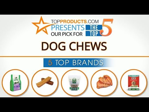 best-dog-chew-reviews-2017-–-how-to-choose-the-best-dog-chew