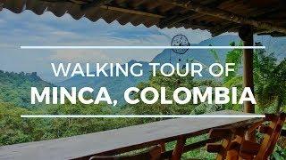 [4K] MINCA, COLOMBIA WALKING TOUR