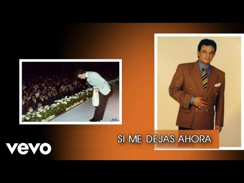 José José - Si Me Dejas Ahora (Cover Audio)