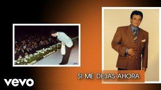 José José - Si Me Dejas Ahora (Cover Audio) thumbnail