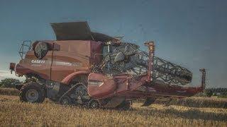 case ih 8230 combine cutting osr 2013 harvest 2013