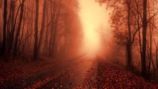 Eluvium - Leaves Eclipse the Light