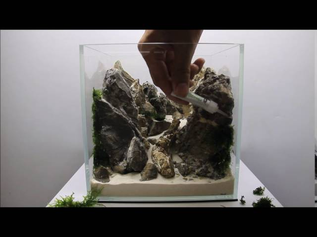 Aquascaping Aquadesigner Mountain Scape Realisation Nano Aquarium    Clipzui.com