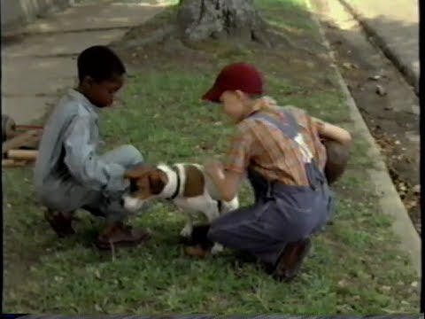 Trailers For Less >> My Dog Skip (2000) Teaser (VHS Capture) - YouTube