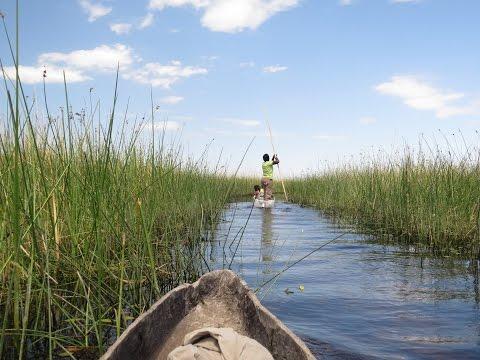 2016 12 05 - Delta Okawango