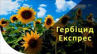 Експрес - гербіцид на соняшник Експрес Сан