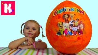 Барбоскины большое яйцо с сюрпризом/ открываем игрушки
