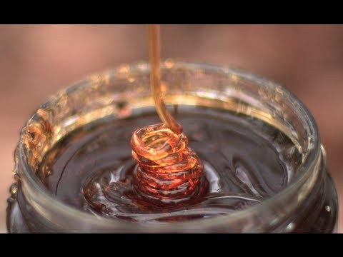 Amazing Honey Coiling High Speed Video! - Smarter Every Day 53