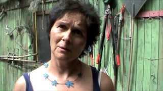 ReclaimPowerTour Tag 17 -  Solidarische Landwirtschaft Wildwuchs