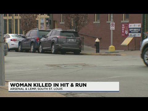 Illinois woman dead, 1 critically injured in South City hit-and-run