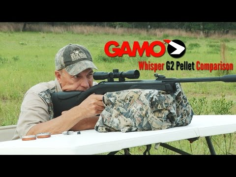 Which pellet should you use with an Air Rifle? - YouTube