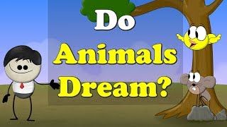 Do Animals Dream? | #aumsum