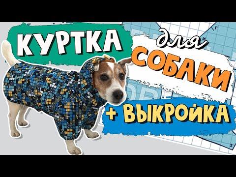 Куртка для собаки своими руками куртка для собаки