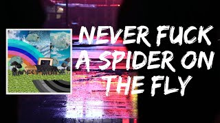 Never Fuck A Spider On The Fly (Lyrics) by Modest Mouse