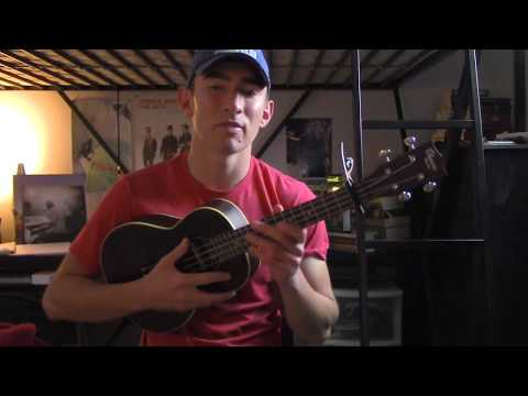 Alan Walker, Noah Cyrus & Digital Farm Animals - All Falls Down - Ukulele Tutorial