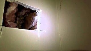 7 Жутких Находок Найденных в Стенах Своих Домов