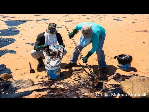 Defending Brazil's Coast From the Latest Oil Spill
