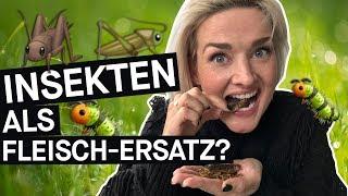 Insekten essen: Fleischersatz und Klimaretter – funktioniert das im Alltag? || PULS Reportage