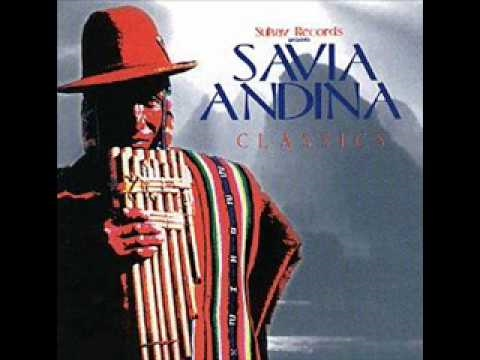 verbenita savia andina