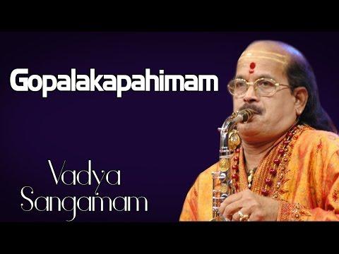 Gopalakapahimam- Shashank (Album: Vadya Sangamam ) Instrumental