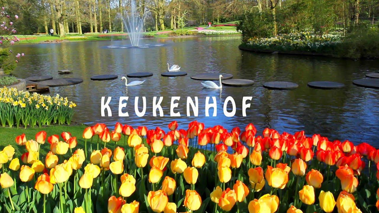 keukenhof is de tuin van europa is een van de grootste bloementuin van de wereld full hd youtube. Black Bedroom Furniture Sets. Home Design Ideas