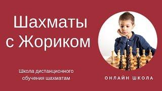 Шахматы с Жориком Школа обучения шахматам для детей и взрослых
