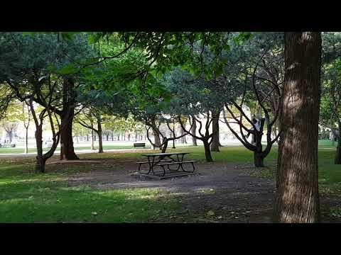 Parc Lafontaine - Lafontaine Park - Montreal, Québec, Canada